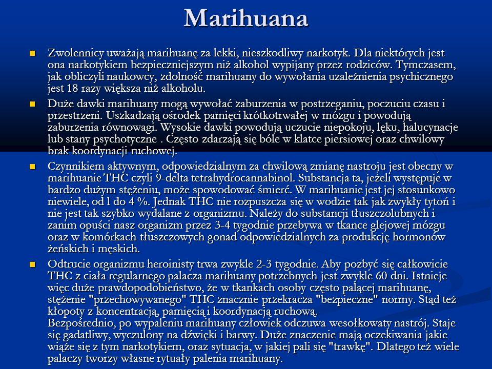 Marihuana Zwolennicy uważają marihuanę za lekki, nieszkodliwy narkotyk. Dla niektórych jest ona narkotykiem bezpieczniejszym niż alkohol wypijany prze