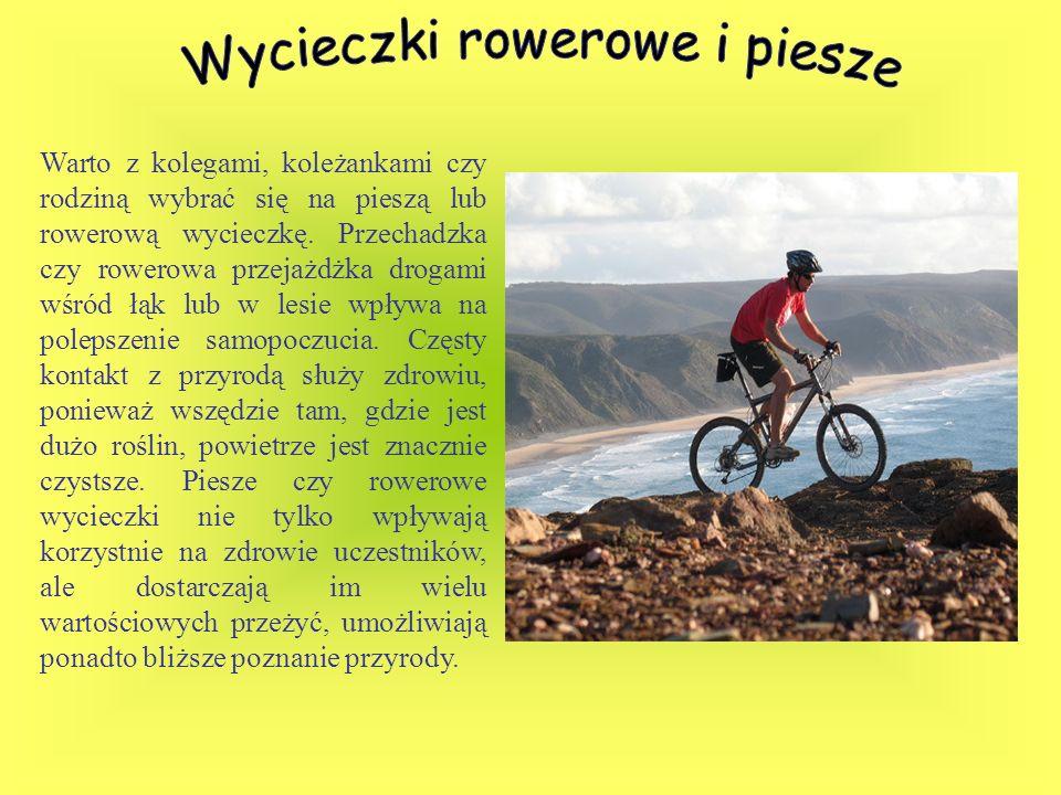 Warto z kolegami, koleżankami czy rodziną wybrać się na pieszą lub rowerową wycieczkę. Przechadzka czy rowerowa przejażdżka drogami wśród łąk lub w le