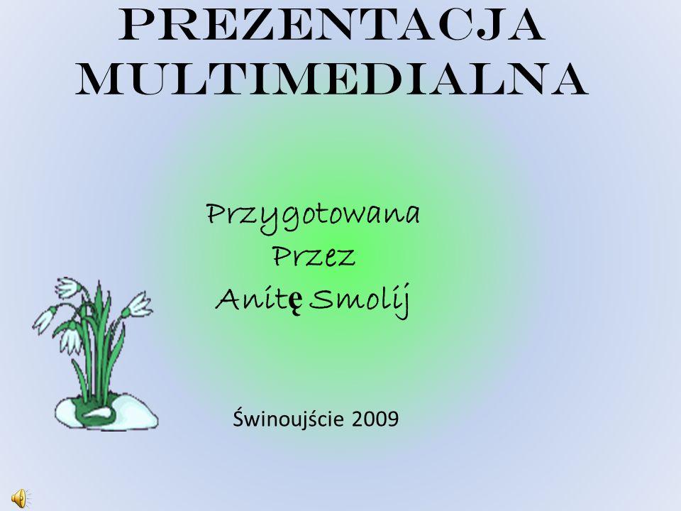 PREZENTACJA MULTIMEDIALNA Przygotowana Przez Anit ę Smolij Świnoujście 2009