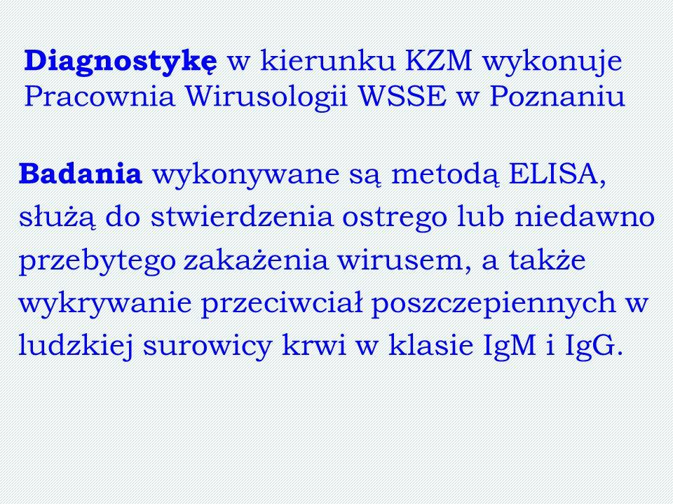 Diagnostykę w kierunku KZM wykonuje Pracownia Wirusologii WSSE w Poznaniu Badania wykonywane są metodą ELISA, służą do stwierdzenia ostrego lub niedaw