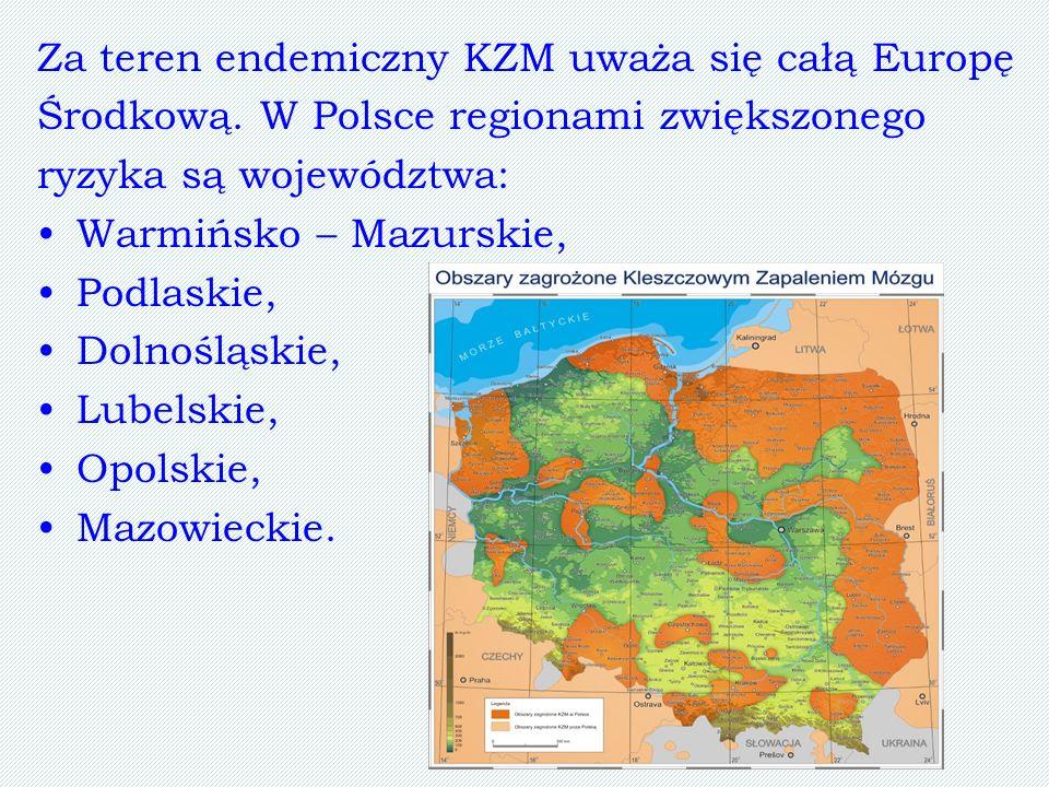 Za teren endemiczny KZM uważa się całą Europę Środkową. W Polsce regionami zwiększonego ryzyka są województwa: Warmińsko – Mazurskie, Podlaskie, Dolno