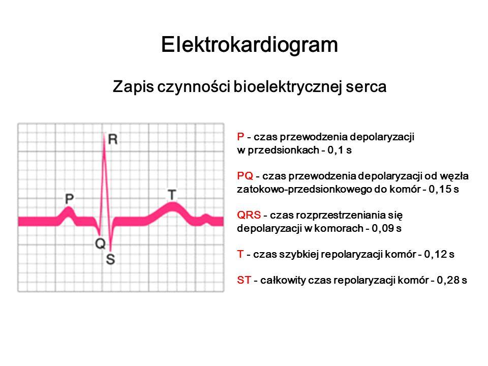 Elektrokardiogram Zapis czynności bioelektrycznej serca P - czas przewodzenia depolaryzacji w przedsionkach - 0,1 s PQ - czas przewodzenia depolaryzac