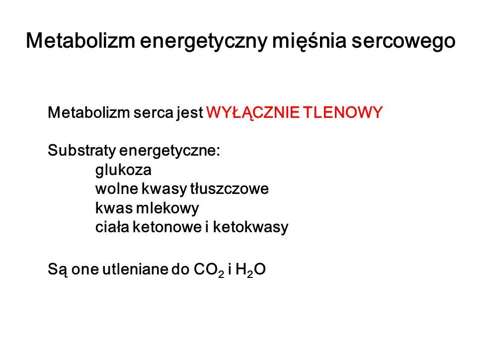 Metabolizm energetyczny mięśnia sercowego Metabolizm serca jest WYŁĄCZNIE TLENOWY Substraty energetyczne: glukoza wolne kwasy tłuszczowe kwas mlekowy