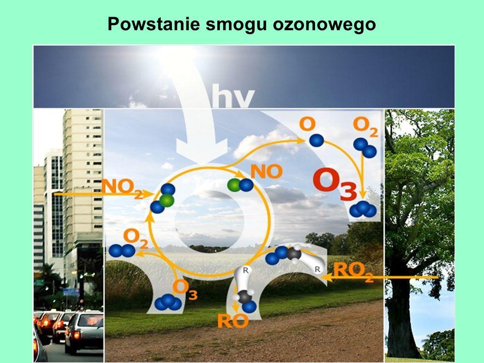 Powstanie smogu ozonowego