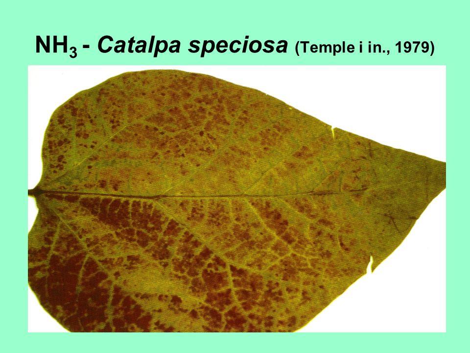 NH 3 - Catalpa speciosa (Temple i in., 1979)