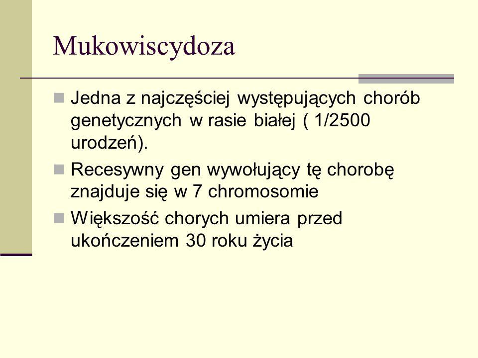 Mukowiscydoza Jedna z najczęściej występujących chorób genetycznych w rasie białej ( 1/2500 urodzeń). Recesywny gen wywołujący tę chorobę znajduje się