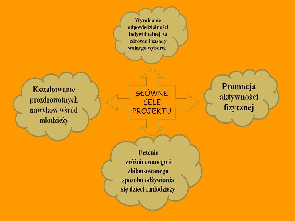 SAMORZĄD UCZNIOWSKI - przeprowadzenie ankiet diagnozujących - techniczna organizacja Targów Zdrowia ODZICE RODZICE - udział w tworzeniu prezentacji multimedialnych - pomoc przy transporcie sprzętu muzycznego i nagłaśniającego - pomoc w przygotowaniu straganów z potrawami na Targi Zdrowia INSTYTUCJE LOKALNE - przekazanie materiałów edukacyjnych - Sanepid - możliwość przeprowadzania prób zespołu The Witaminkers w Klubie Garnizonowym i w Domu Kultury.