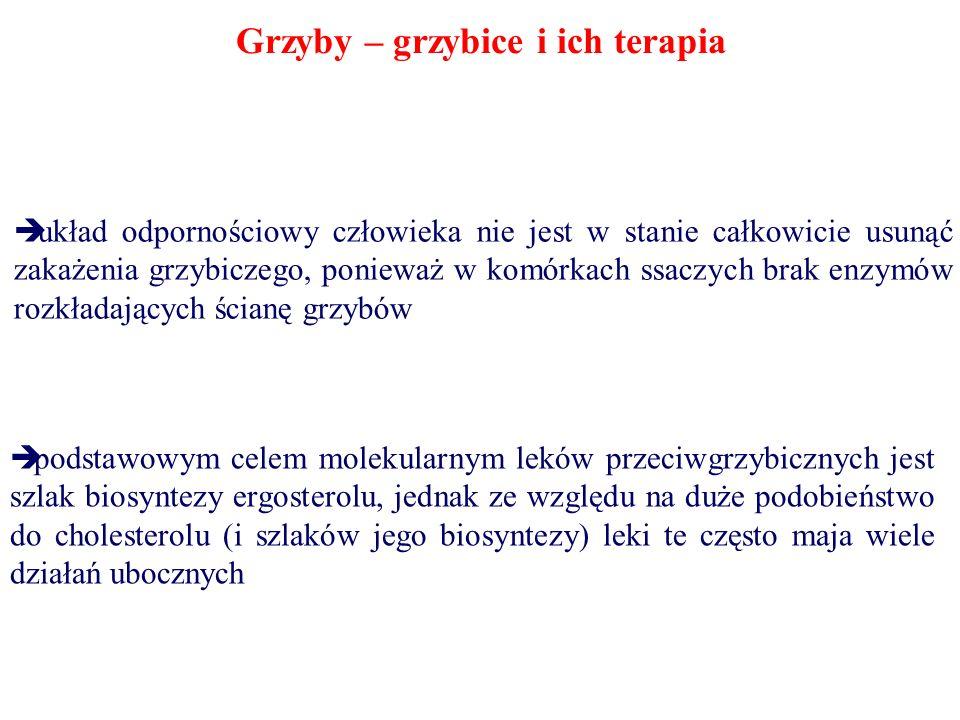 Grzyby – grzybice i ich terapia układ odpornościowy człowieka nie jest w stanie całkowicie usunąć zakażenia grzybiczego, ponieważ w komórkach ssaczych