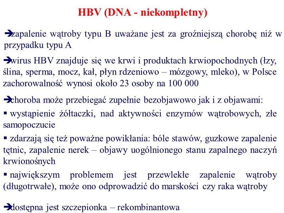 HCV (+RNA) – żółtaczka zakaźna przenoszenie głównie w wyniku iniekcji (transfuzje, zastrzyki, narkotyki) na ogół zakażenie przebiega bezobjawowo, ale 70% zarażonych osób staje się nosicielami, u wielu z nich rozwija się przewlekłe zapalenie wątroby – w efekcie marskość i rak brak skutecznych metod leczenia i szczepionki