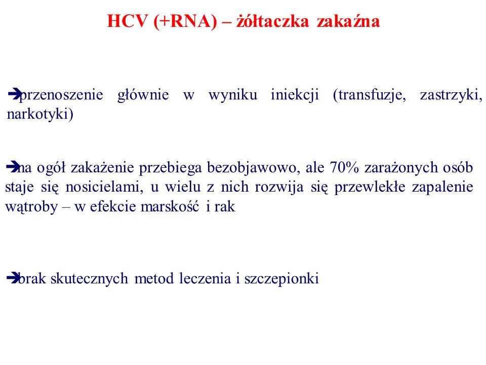 HCV (+RNA) – żółtaczka zakaźna przenoszenie głównie w wyniku iniekcji (transfuzje, zastrzyki, narkotyki) na ogół zakażenie przebiega bezobjawowo, ale