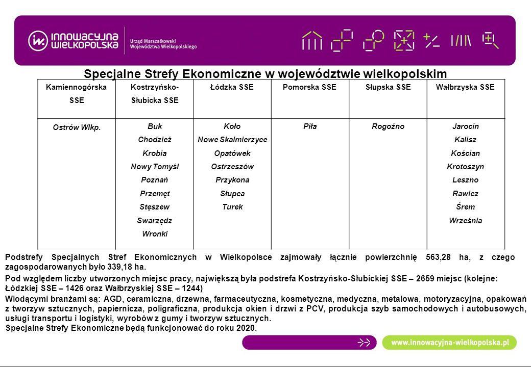 Specjalne Strefy Ekonomiczne w województwie wielkopolskim Kamiennogórska SSE Kostrzyńsko- Słubicka SSE Łódzka SSEPomorska SSESłupska SSEWałbrzyska SSE