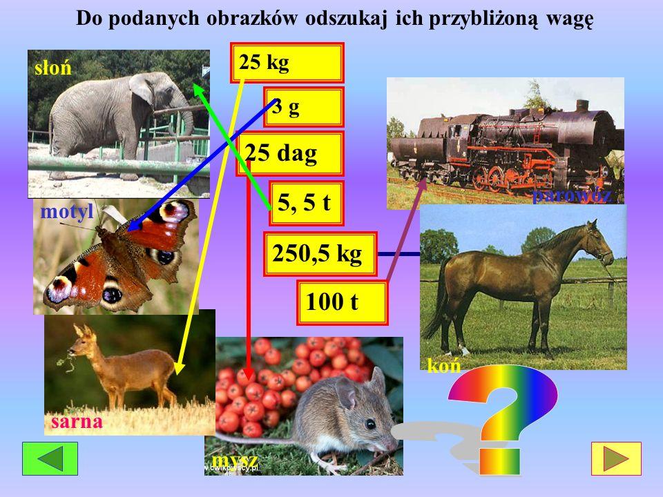 parowóz mysz sarna motyl słoń 25 dag 3 g 25 kg 100 t 5, 5 t Do podanych obrazków odszukaj ich przybliżoną wagę 250,5 kg koń