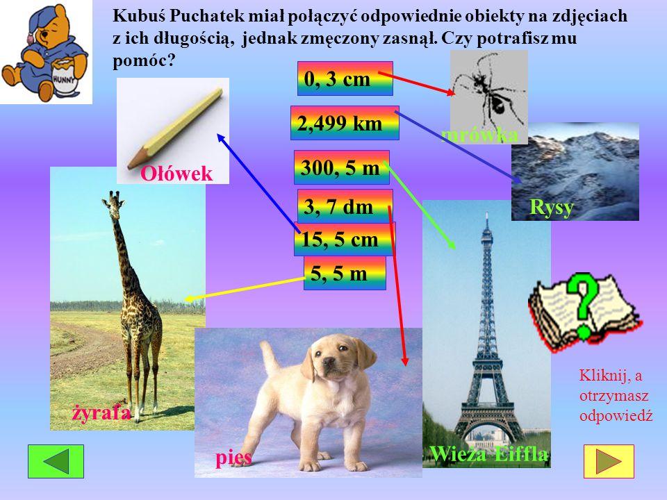 5, 5 m 15, 5 cm 3, 7 dm 300, 5 m 0, 3 cm Wieża Eiffla żyrafa Rysy Ołówek mrówka pies 2,499 km Kubuś Puchatek miał połączyć odpowiednie obiekty na zdję