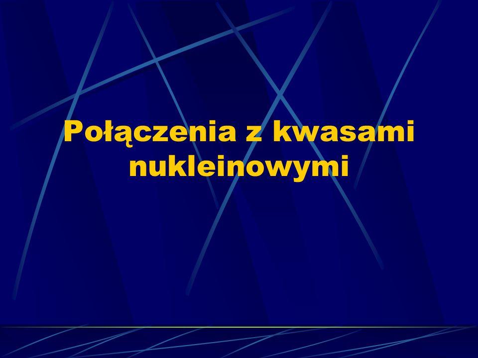Połączenia z kwasami nukleinowymi