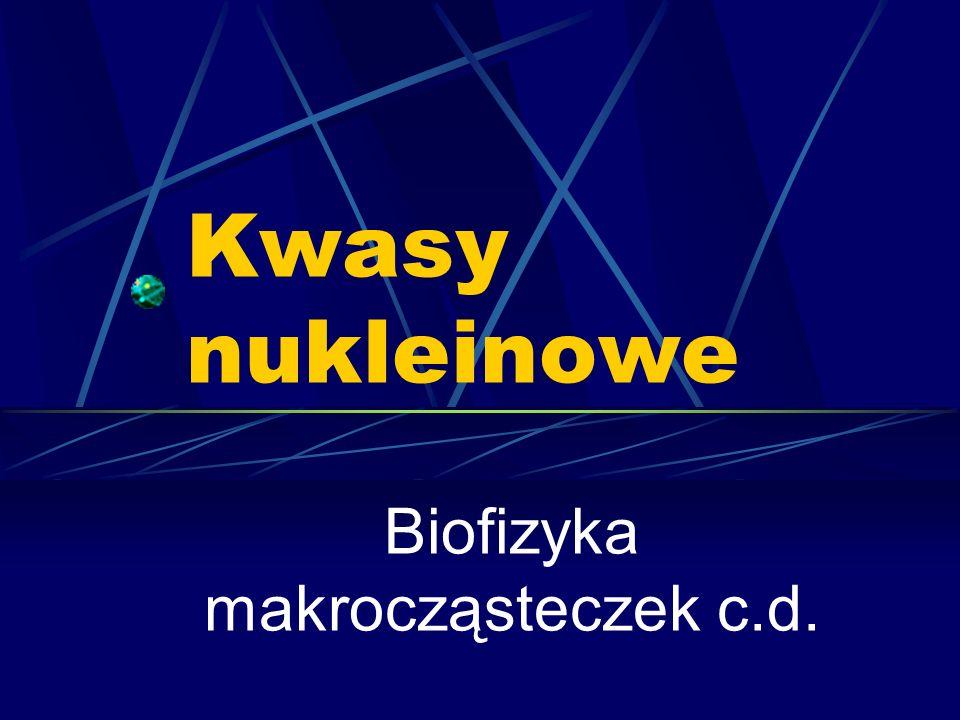 Kwasy nukleinowe Biofizyka makrocząsteczek c.d.