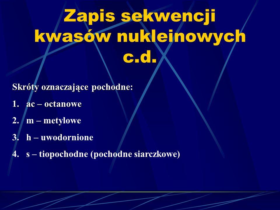 Zapis sekwencji kwasów nukleinowych c.d. Skróty oznaczające pochodne: 1.ac – octanowe 2.m – metylowe 3.h – uwodornione 4.s – tiopochodne (pochodne sia