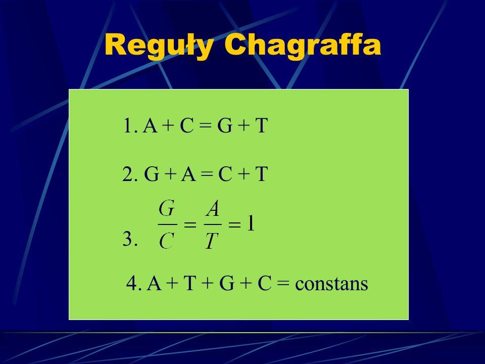 Reguły Chagraffa 1. A + C = G + T 2. G + A = C + T 3. 4. A + T + G + C = constans