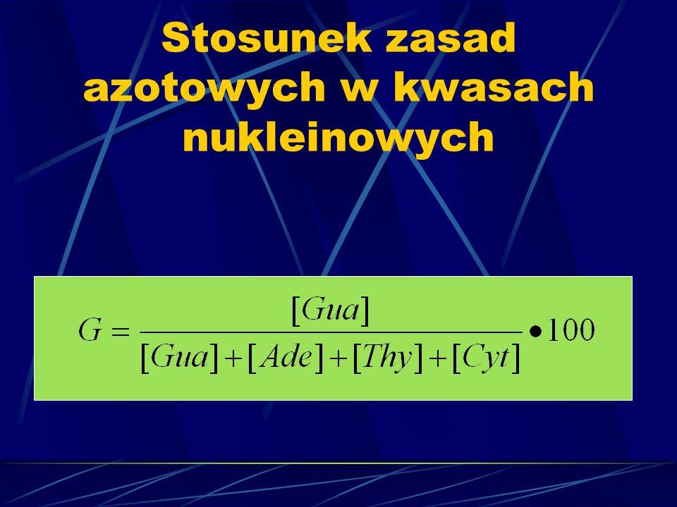 Stosunek zasad azotowych w kwasach nukleinowych
