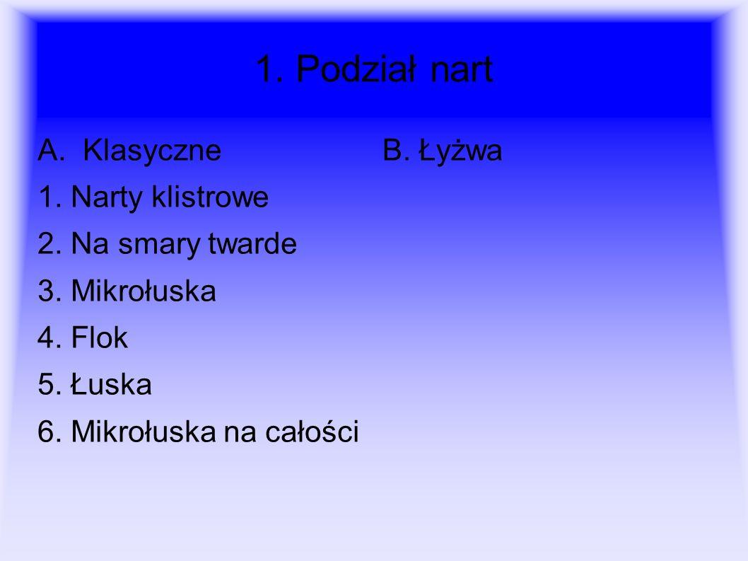 1. Podział nart A. Klasyczne 1. Narty klistrowe 2. Na smary twarde 3. Mikrołuska 4. Flok 5. Łuska 6. Mikrołuska na całości B. Łyżwa