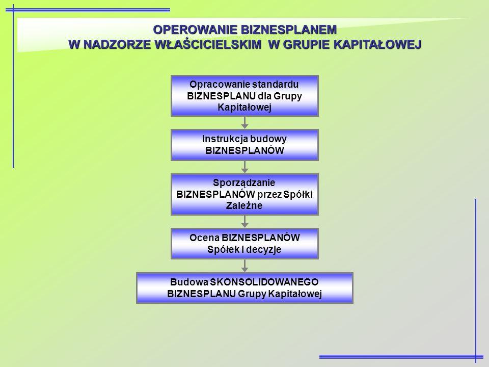 OPEROWANIE BIZNESPLANEM W NADZORZE WŁAŚCICIELSKIM W GRUPIE KAPITAŁOWEJ Opracowanie standardu BIZNESPLANU dla Grupy Kapitałowej Sporządzanie BIZNESPLAN