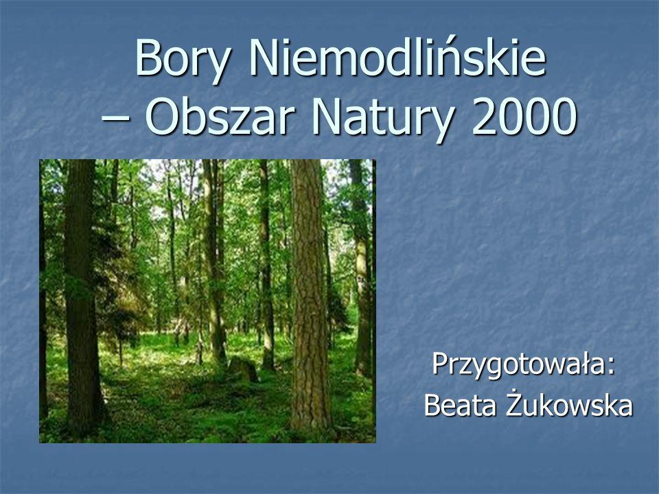 Bory Niemodlińskie – Obszar Natury 2000 Przygotowała: Przygotowała: Beata Żukowska