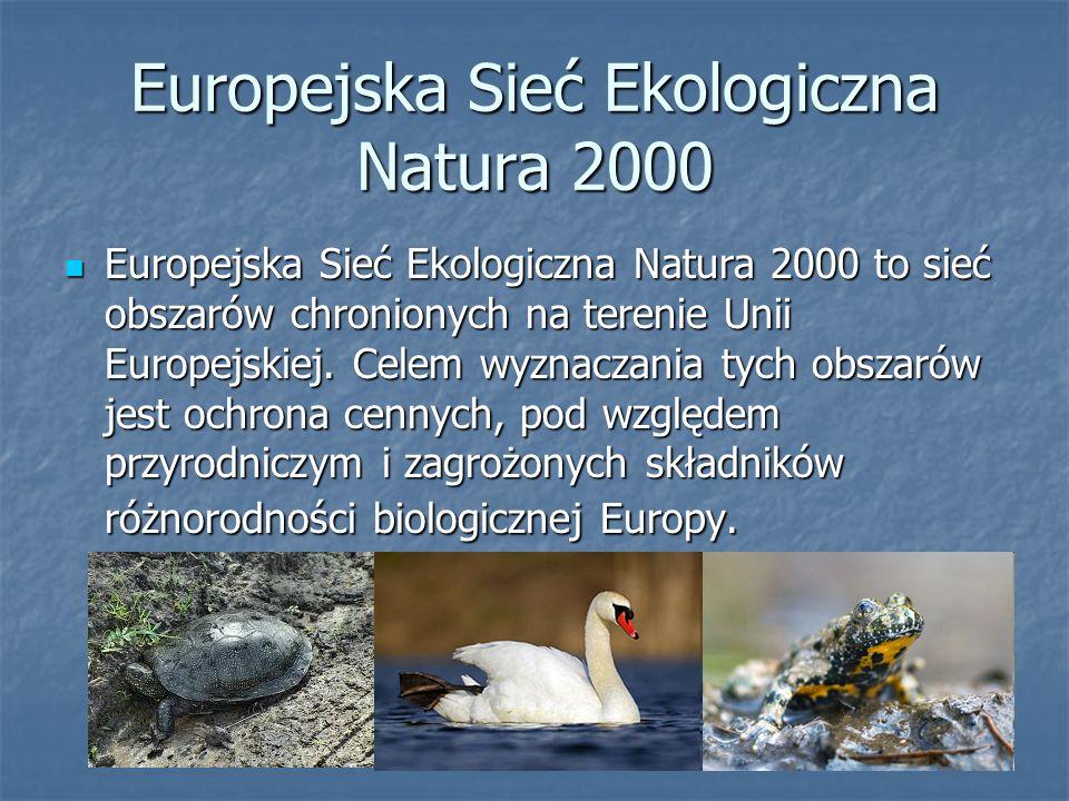 Europejska Sieć Ekologiczna Natura 2000 Europejska Sieć Ekologiczna Natura 2000 to sieć obszarów chronionych na terenie Unii Europejskiej.