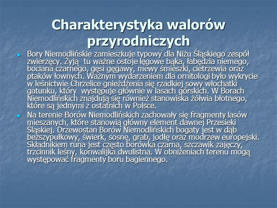Charakterystyka walorów turystycznych Bory Niemodlińskie są największą pozostałością dawnej Puszczy Śląskiej – Przesieki, strzegącej granic jednego z ważniejszych średniowiecznych księstw śląskich – Księstwa Niemodlińskiego.