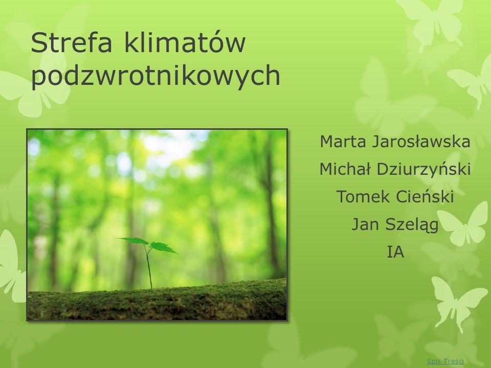 Strefa klimatów podzwrotnikowych Marta Jarosławska Michał Dziurzyński Tomek Cieński Jan Szeląg IA Spis Treści