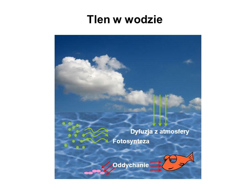 Wymagania tlenowe niektórych gatunków ryb Wymagany poziom tlenu [mg/l] Gatunki Bardzo wysokie 10-15Pstrąg potokowy, śliz Wysokie7-10Kiełb, lipień, pstrąg tęczowy Średnie5-6Brzana, okoń, szczupak Niskie<5Karp, karaś, lin