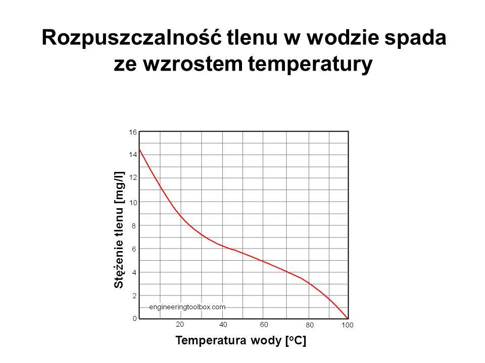 Przyczyny deficytu tlenu w wodzie Eutrofizacja wysoka produkcja wysoka respiracja Długotrwała stagnacja wody ograniczona dyfuzja Pokrywa lodowa brak dyfuzji