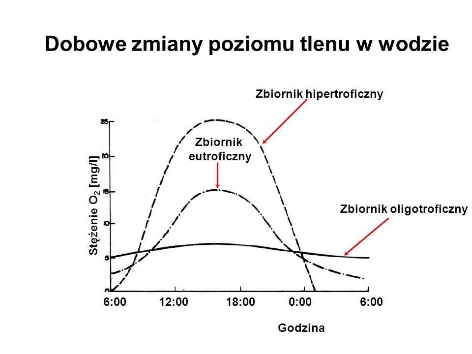 WęglowodanyCO 2 +H 2 O TłuszczeCO 2 +H 2 O BiałkaNH 3 Kwasy nukleinoweNH 3 CH 4 ON 2 (mocznik) C 5 H 4 O 3 N 4 (kwas moczowy) Inne metabolity azotowe ryb: Kreatyna Kreatynina TMAO - tlenek trimetyloaminy - (CH 3 ) 3 NO Produkty przemiany materii ryb