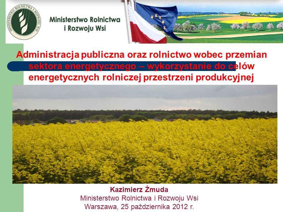 Administracja publiczna oraz rolnictwo wobec przemian sektora energetycznego – wykorzystanie do celów energetycznych rolniczej przestrzeni produkcyjne