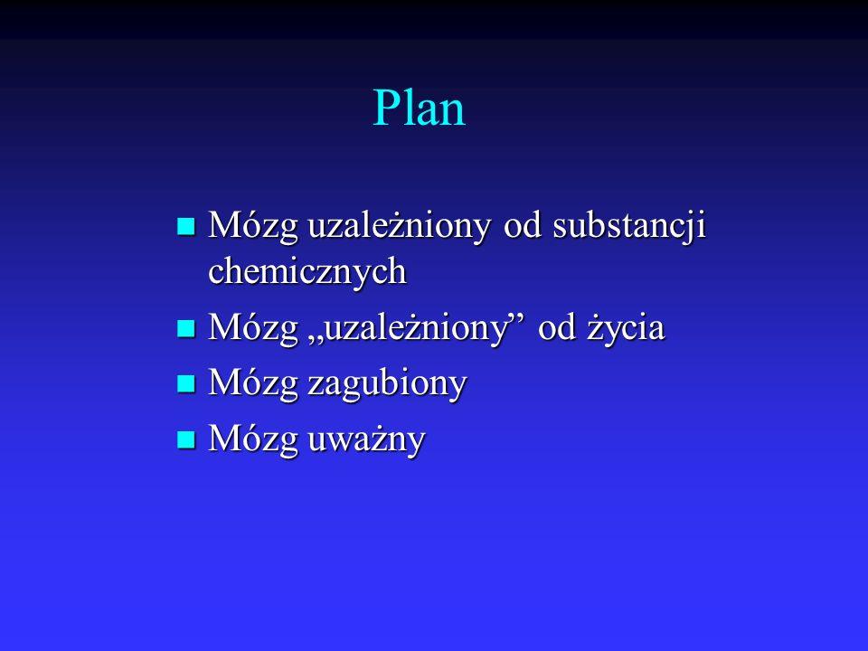 Plan Mózg uzależniony od substancji chemicznych Mózg uzależniony od substancji chemicznych Mózg uzależniony od życia Mózg uzależniony od życia Mózg za