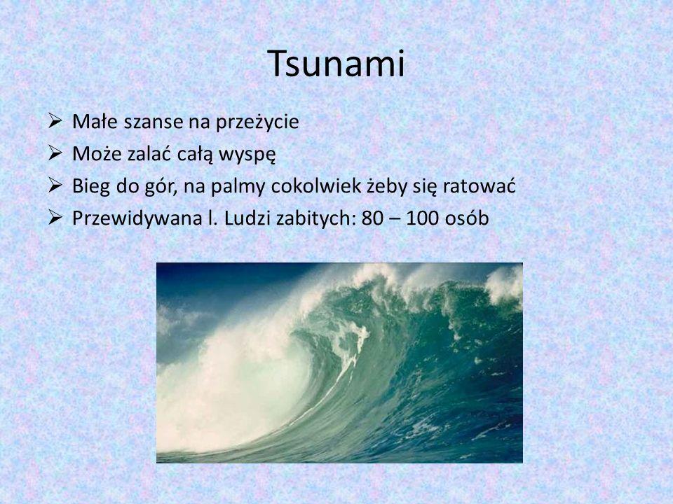 Tsunami Małe szanse na przeżycie Może zalać całą wyspę Bieg do gór, na palmy cokolwiek żeby się ratować Przewidywana l. Ludzi zabitych: 80 – 100 osób