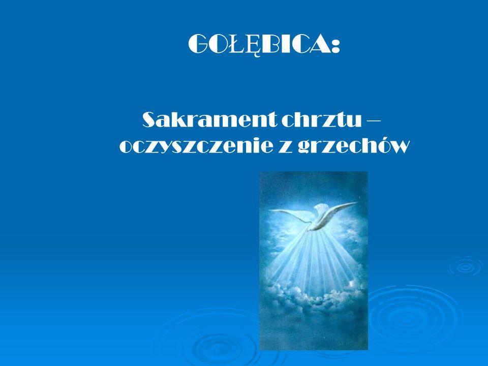 GO ŁĘ BICA: Sakrament chrztu – oczyszczenie z grzechów