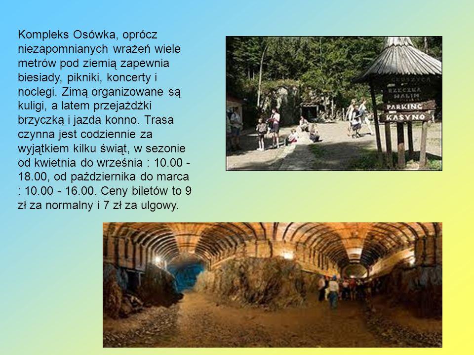 Kompleks Osówka, oprócz niezapomnianych wrażeń wiele metrów pod ziemią zapewnia biesiady, pikniki, koncerty i noclegi. Zimą organizowane są kuligi, a