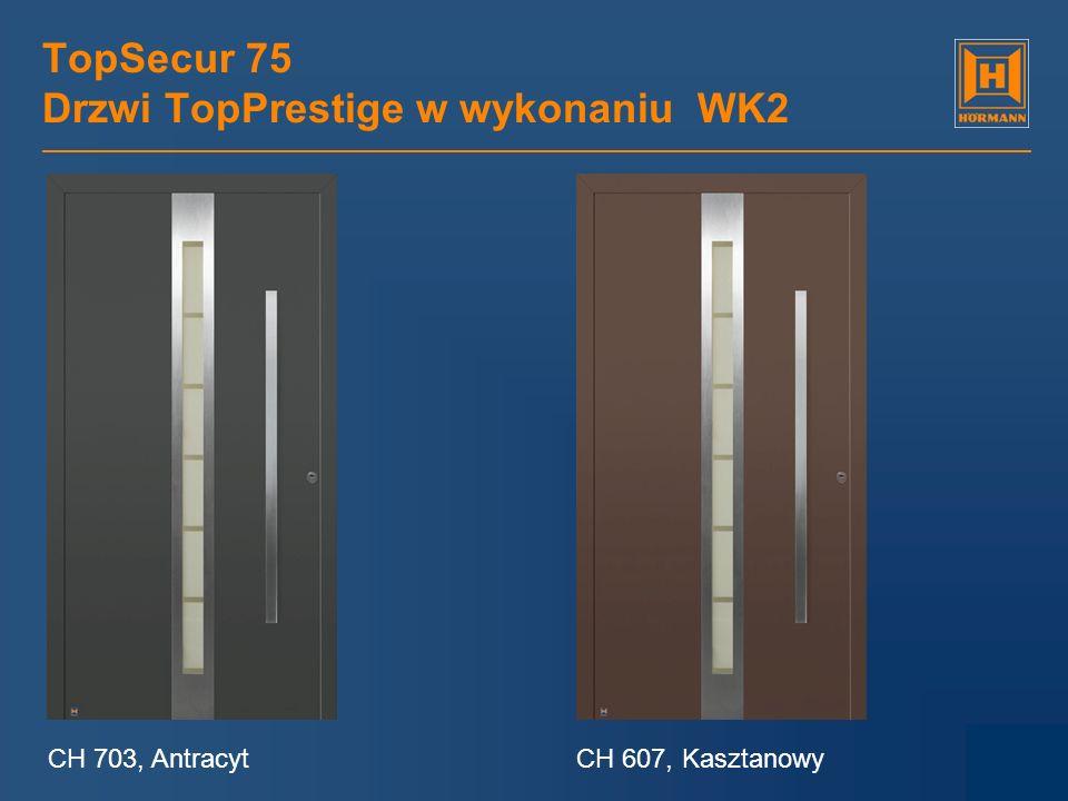 TopSecur 75 Drzwi TopPrestige w wykonaniu WK2 CH 703, AntracytCH 607, Kasztanowy