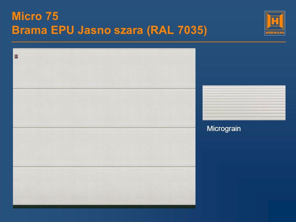 Micro 75 Brama EPU Jasno szara (RAL 7035) Micrograin