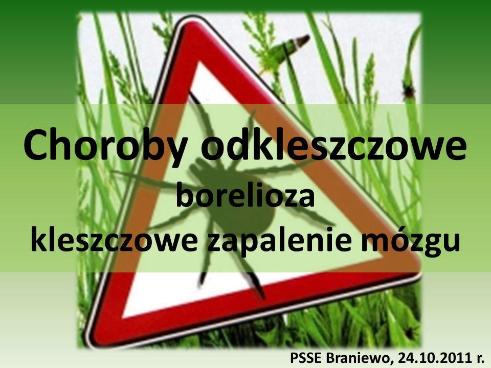 Choroby odkleszczowe borelioza kleszczowe zapalenie mózgu PSSE Braniewo, 24.10.2011 r.