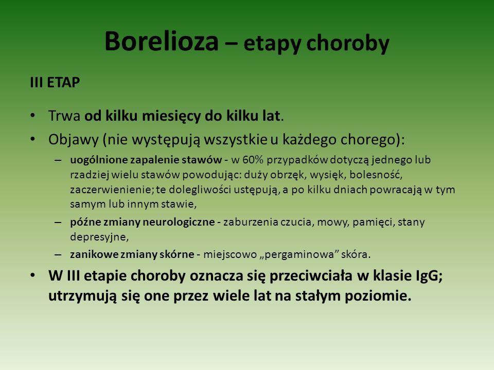 Borelioza – etapy choroby III ETAP Trwa od kilku miesięcy do kilku lat. Objawy (nie występują wszystkie u każdego chorego): – uogólnione zapalenie sta