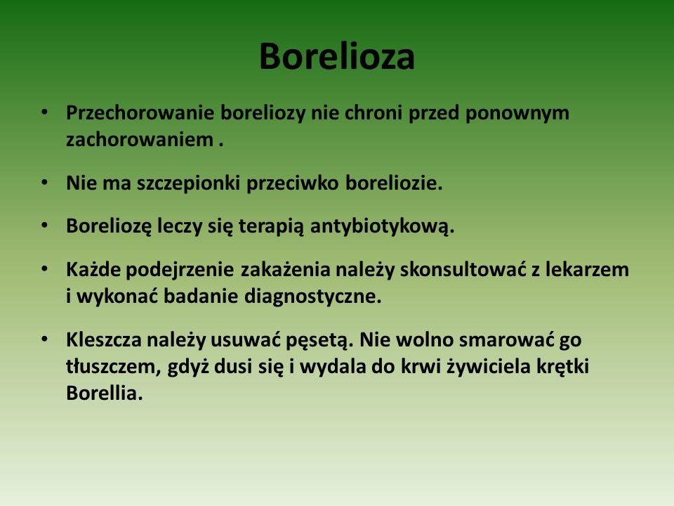 Borelioza Przechorowanie boreliozy nie chroni przed ponownym zachorowaniem. Nie ma szczepionki przeciwko boreliozie. Boreliozę leczy się terapią antyb