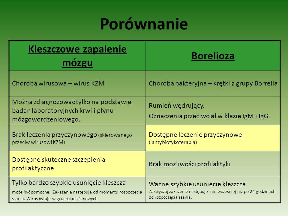 Porównanie Kleszczowe zapalenie mózgu Borelioza Choroba wirusowa – wirus KZMChoroba bakteryjna – krętki z grupy Borrelia Można zdiagnozować tylko na p