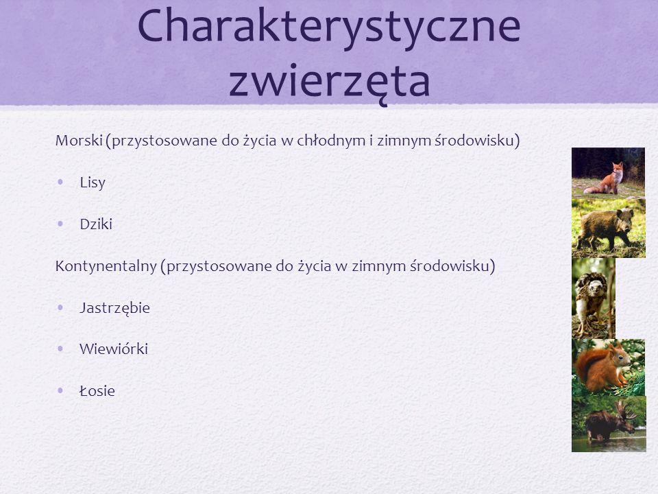 Charakterystyczne zwierzęta Morski (przystosowane do życia w chłodnym i zimnym środowisku) Lisy Dziki Kontynentalny (przystosowane do życia w zimnym ś