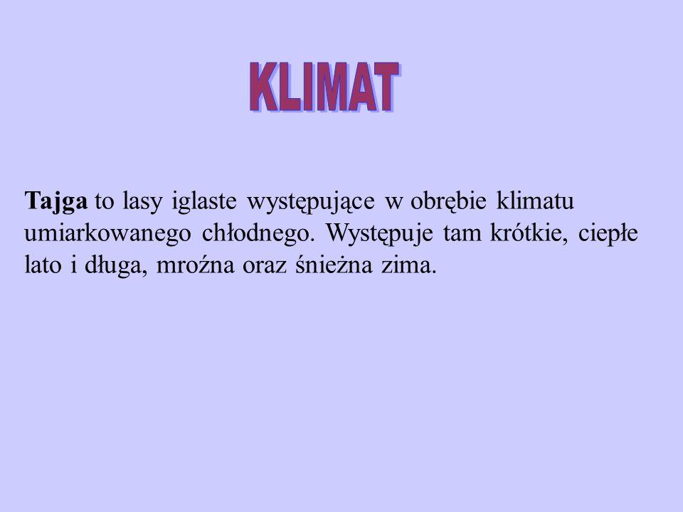 TEMPERATURA KLIMAT (temperatura)
