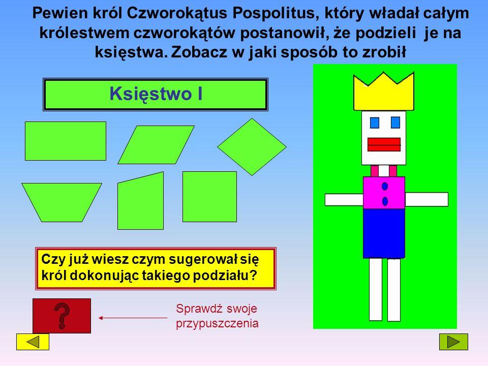 Pewien król Czworokątus Pospolitus, który władał całym królestwem czworokątów postanowił, że podzieli je na księstwa. Zobacz w jaki sposób to zrobił K