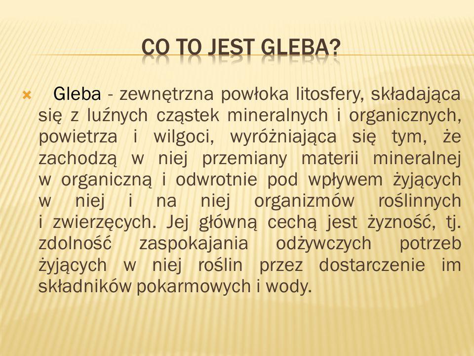 W polskim systemie bonitacji gleby wyróżnia się 8 klas gleb gruntów ornych: I, II, IIIa, IIIb, IVa, IVb, V, VI i 6 klas gleb użytków zielonych: I, II, III, IV, V, VI.