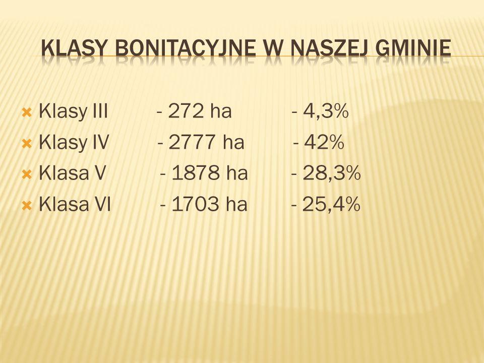 Klasy III - 272 ha - 4,3% Klasy IV - 2777 ha - 42% Klasa V - 1878 ha - 28,3% Klasa VI - 1703 ha - 25,4%