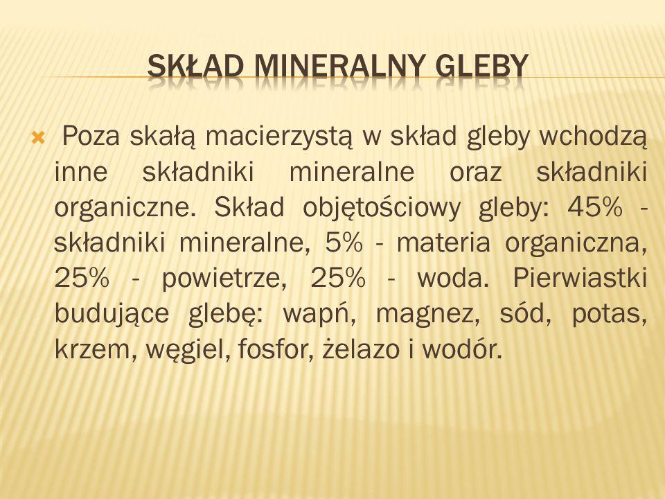 Poza skałą macierzystą w skład gleby wchodzą inne składniki mineralne oraz składniki organiczne.