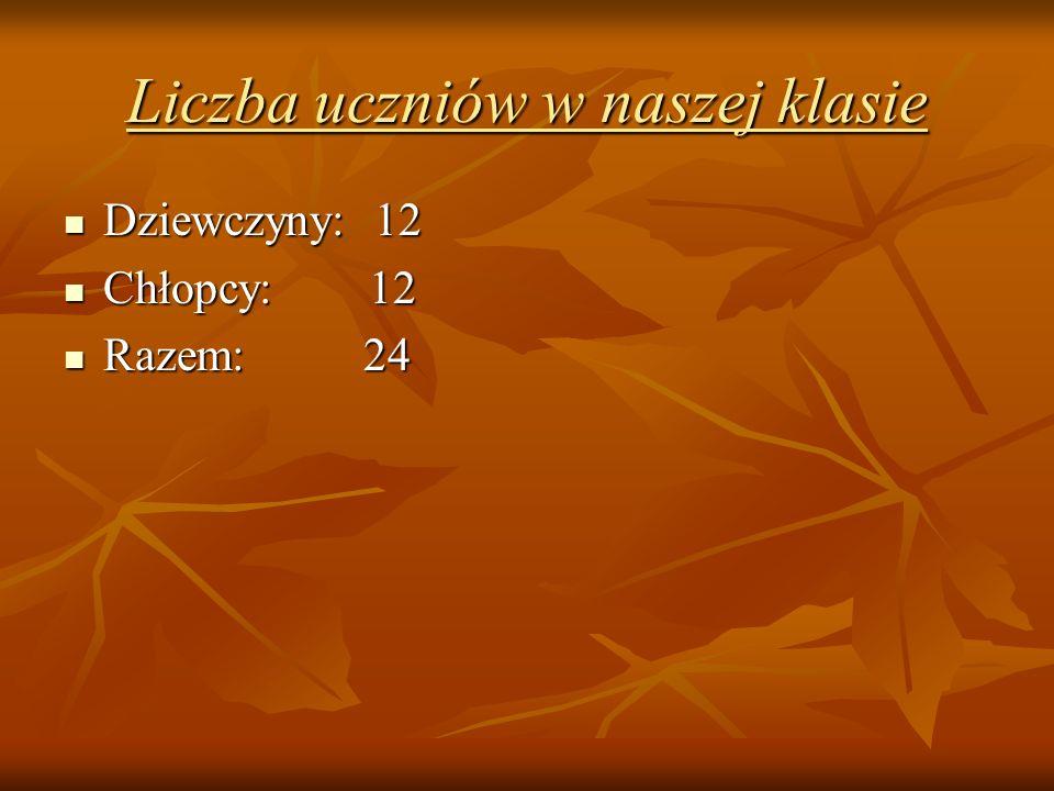 Liczba uczniów w naszej klasie Dziewczyny: 12 Dziewczyny: 12 Chłopcy: 12 Chłopcy: 12 Razem: 24 Razem: 24
