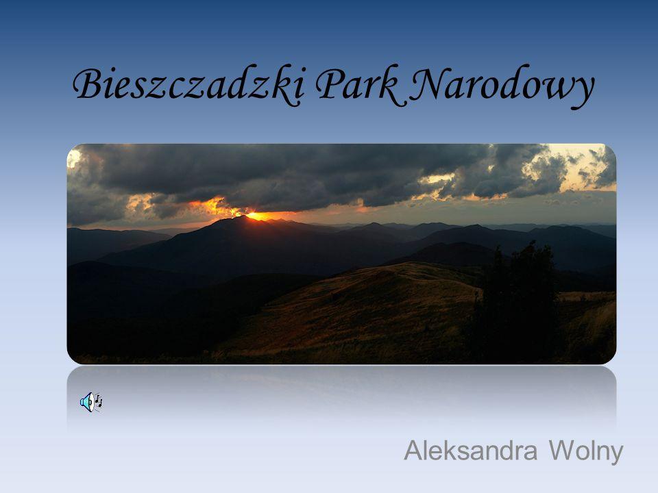 Bieszczadzki Park Narodowy Aleksandra Wolny